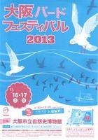 birdfes2013.jpg